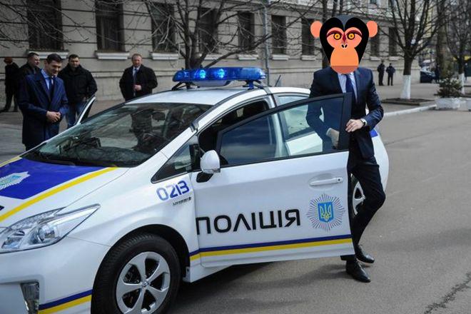 Киевская полиция не справляется с обезьянами